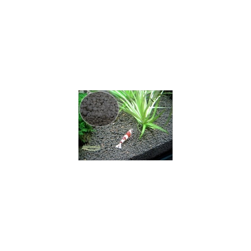 Waterplant Soil Brown